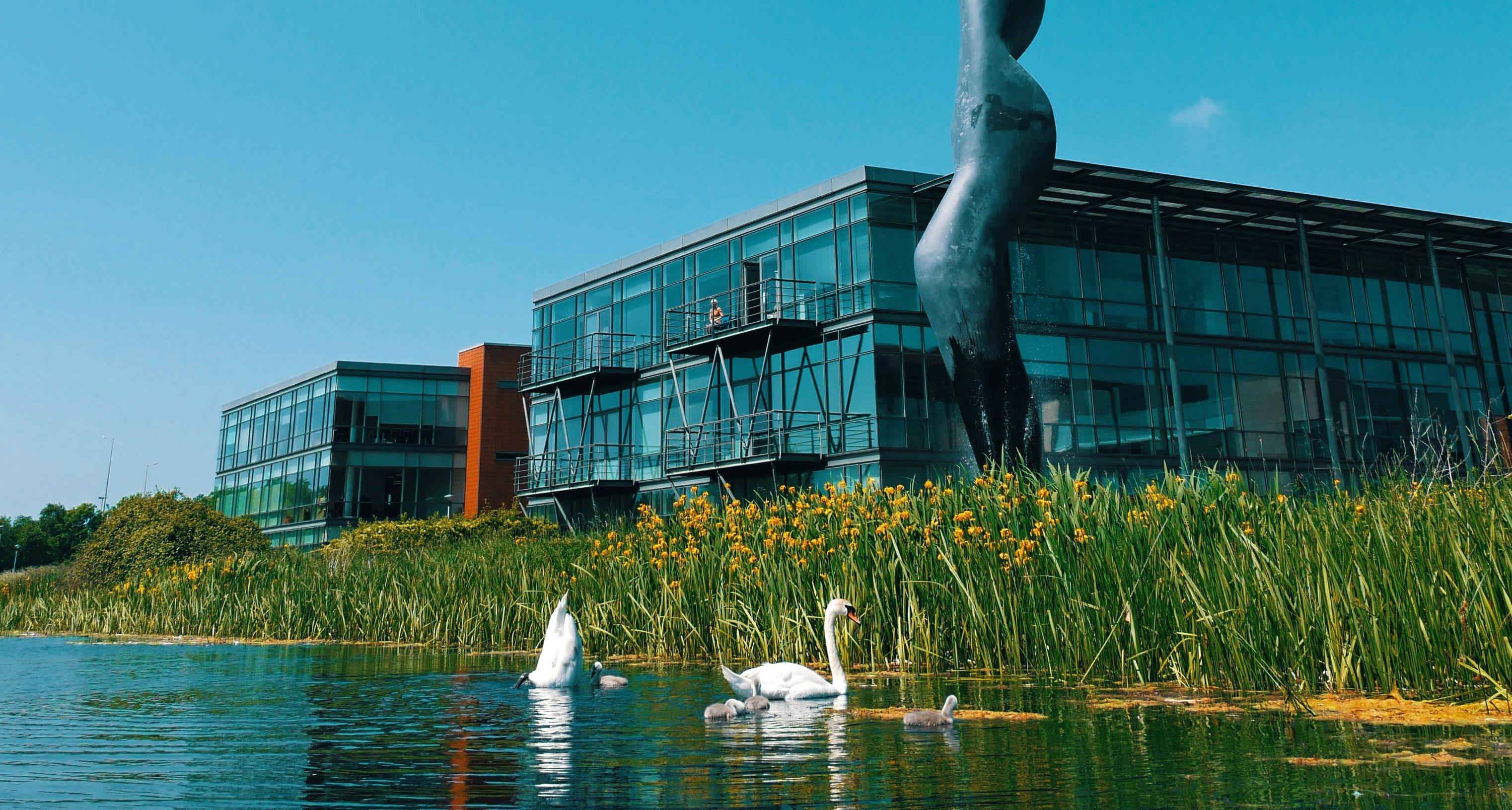 swans parkwest